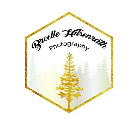 Breelle Hilsenrath Photography
