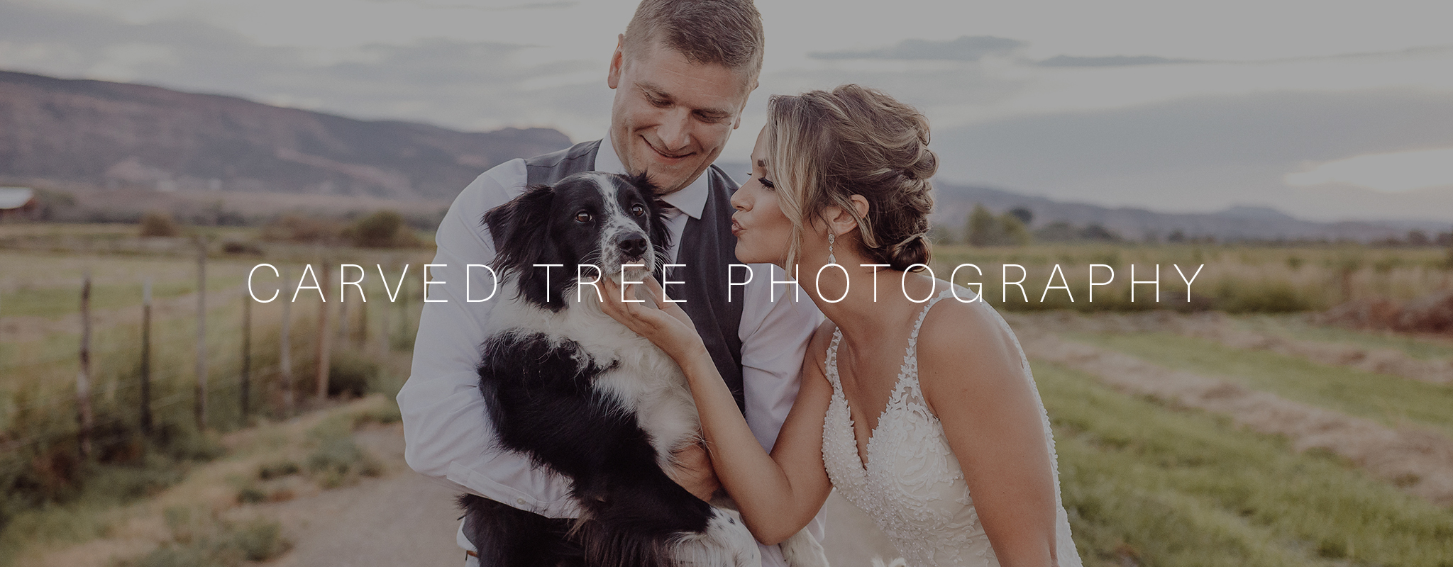 Carved Tree Photography | Wedding photographer in Grand Junction, Colorado featured on WED West Slope - a directory for wedding vendors.