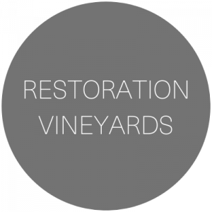 Restoration Vineyards   Winery wedding venue in Palisade, Colorado featured on WED West Slope - a directory for wedding vendors.