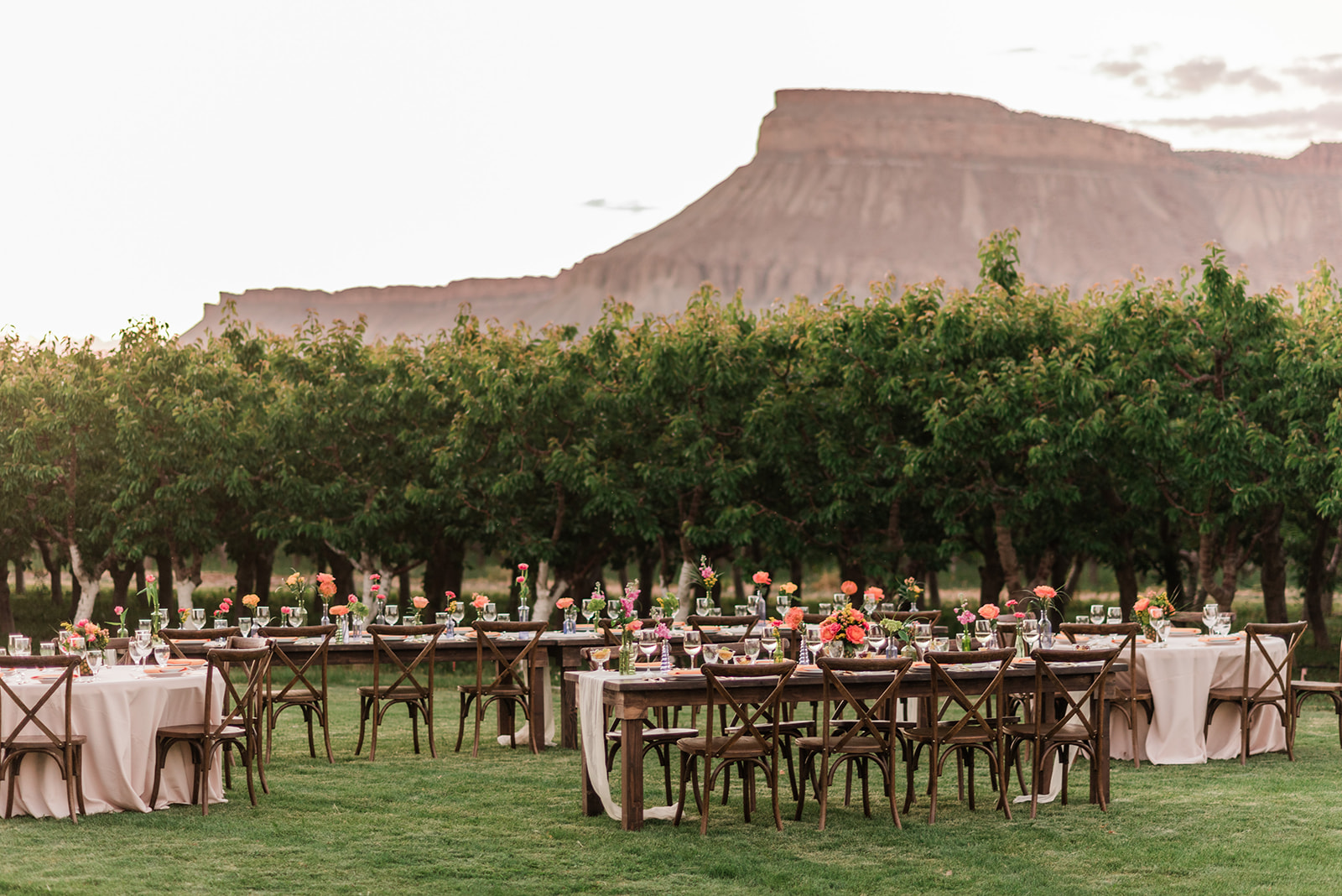 Restoration Vineyards | Winery wedding venue in Palisade, Colorado featured on WED West Slope - a directory for wedding vendors.