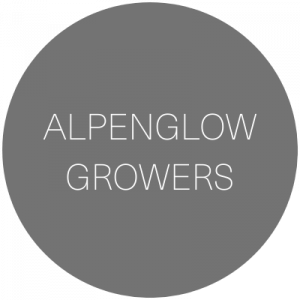 Alpenglow Growers | Wedding Florist in Montrose, Colorado featured on WED West Slope - a directory for wedding vendors.